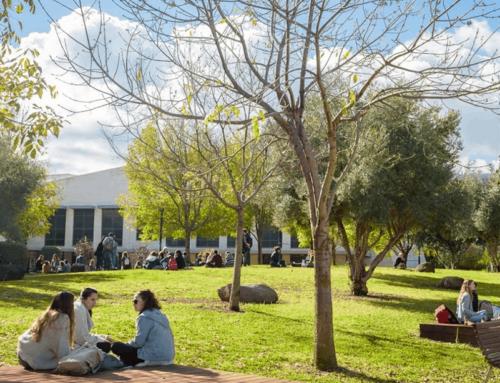 שיפוץ מוסדות לימוד – גם ליפות את המקום וגם להתאים אותו לסטודנטים