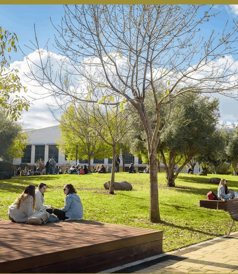 תמונת אוירה סטודנטים במכללה